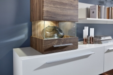Obývací nábytek BRETT_detail proskl. dveří u typu 02_obr. 8