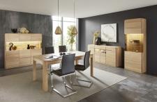 Obývací a jídelní nábytek GLOBE_typy 862 + 874 + 131_záda vitrin dřevo_obr. 12